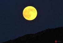 """本月在菲律宾可以看到""""超级月亮"""""""