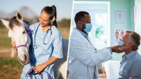 菲卫生部:尚无足够证据证明伊维菌素对治疗新冠有效